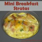 Mini Breakfast Stratas