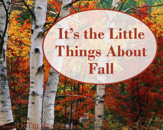Its The Little Things About Fall | It's fall! Cool weather, brightly colored leaves, apple cider…all around there are little things that put a smile on my face.