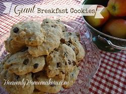 Giant Brekfast Cookies