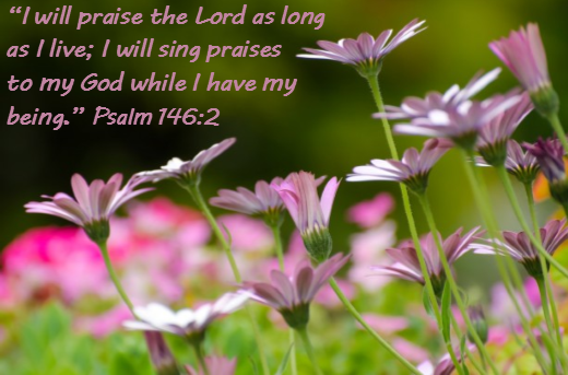 Psalm Chapter 146 Verse 2