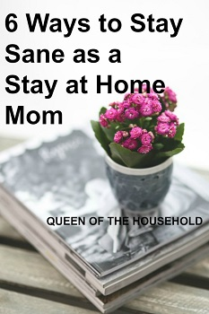 How to Stay Sane as a Stay-at-Home Mom - Queen of the Household