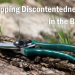 Nipping Discontentedness in the Bud
