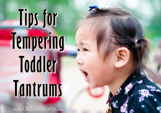Tips for Tempering Toddler Tantrums
