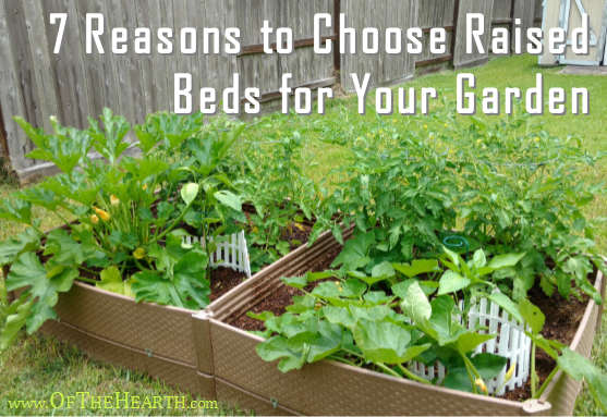 Thinking about starting a garden in your yard? Have you considered using raised beds? Here are 7 benefits that make them a great option.
