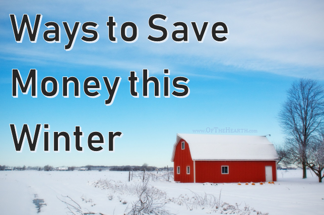The money in our bank accounts doesn't need to drop along with the outdoor temperatures! Here are over a dozen ways to save money during the winter.